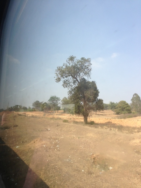 A lonely tree  Shatabdi Express on 10.01.13 BLR-MYS