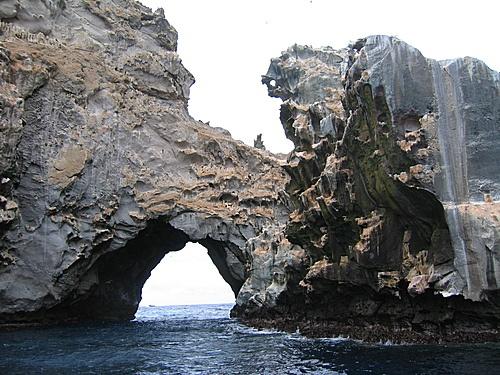 Ascension Island: Boatswain Bird Island,South Coast
