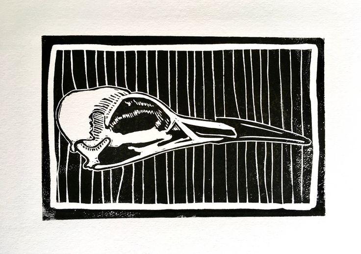 Guillemot Skull Linocut by HuPaLinocuts on Etsy https://www.etsy.com/uk/listing/532955633/guillemot-skull-linocut