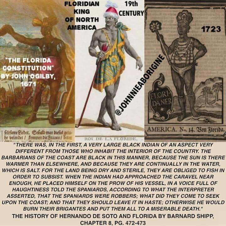 African American Ethnic Trivia Of The Americas