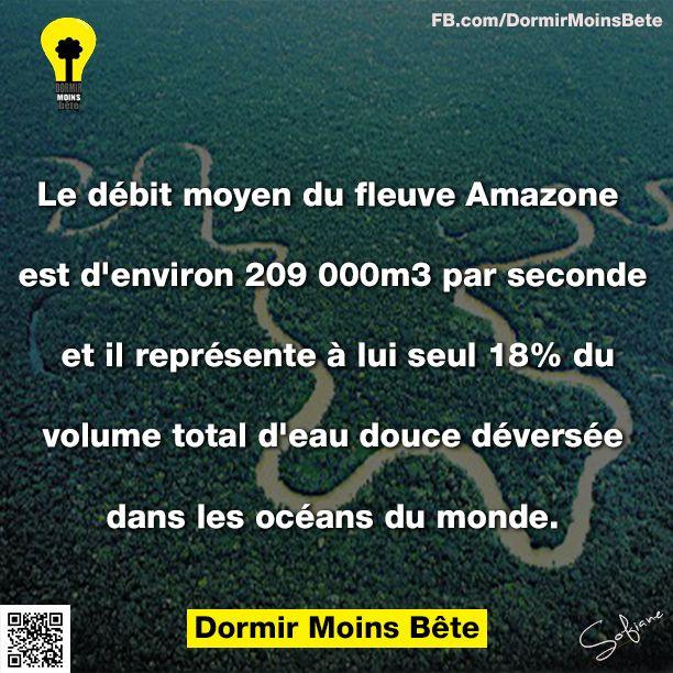 Le débit moyen du fleuve Amazone est d'environ 209.000 m³ par seconde et il représente à lui seul 18% du volume total d'eau douce déversée dans les océans du monde.