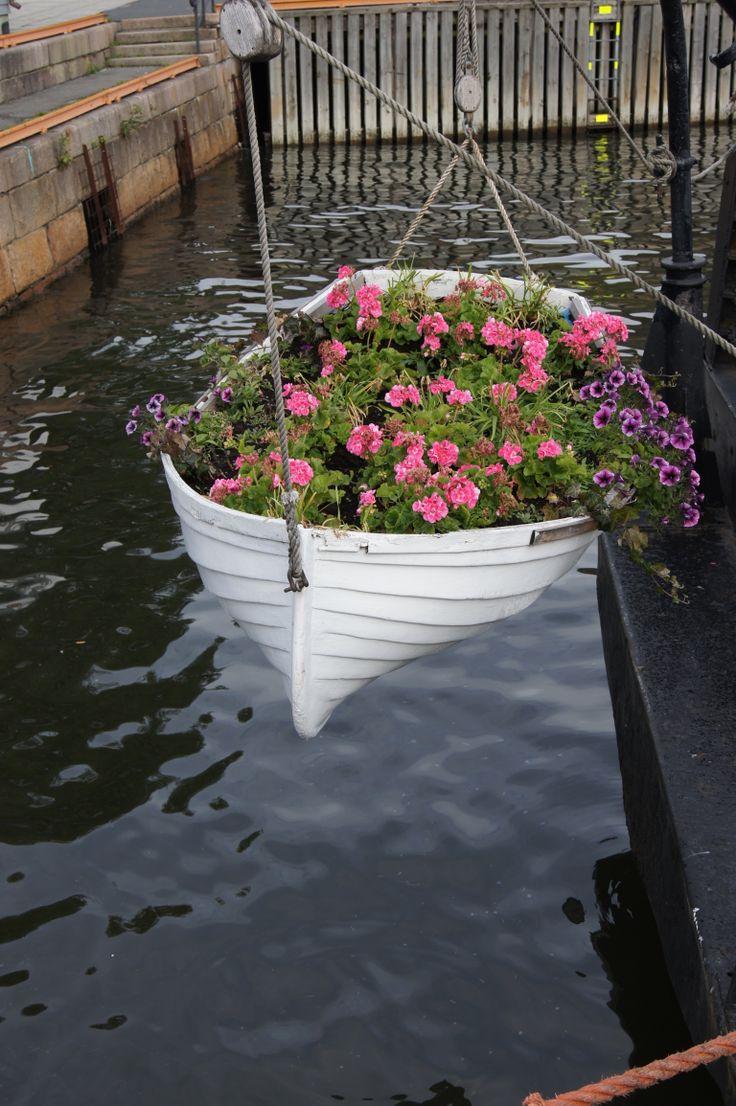 Floating flowers in Norway