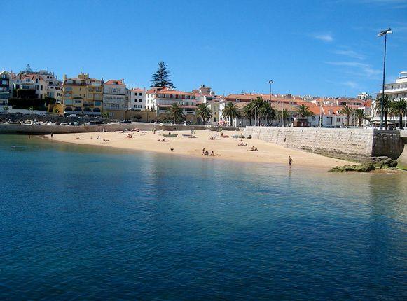 Top 5 Beaches to Visit in Portugal according to @Lauren Davison Davison Davison DiMarco, where in the world is lola? 31.07.2013 Photo: Cascais, Portugal