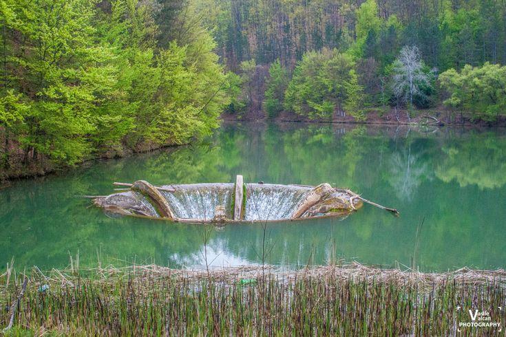 Lacul Vida – O portiță spre poezie și contemplare   Bihor in imagini