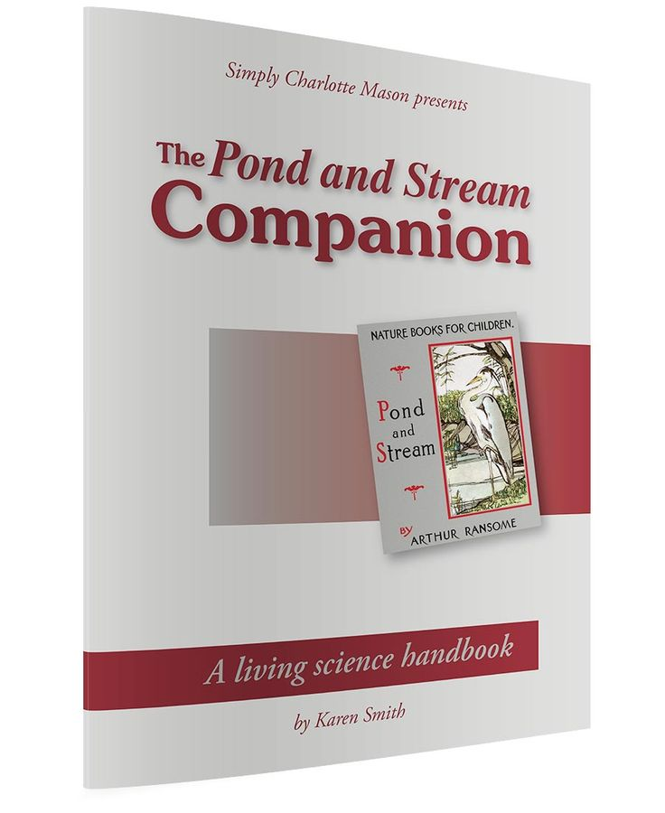 The Pond And Stream Companion 6 7 8Y Nature Study