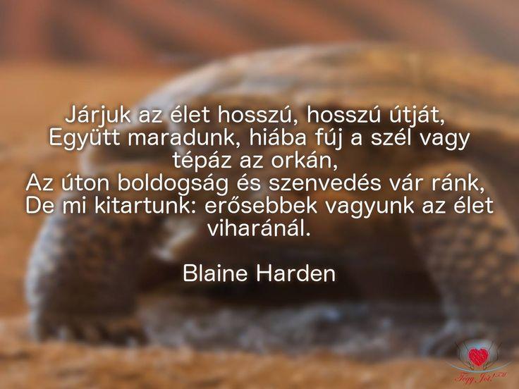 """""""Járjuk az élet hosszú, hosszú útját, Együtt maradunk, hiába fúj a szél vagy tépáz az orkán, Az úton boldogság és szenvedés vár ránk, De mi kitartunk: erősebbek vagyunk az élet viharánál."""" Blaine Harden"""