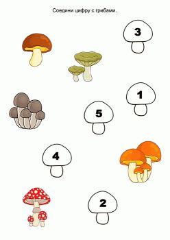 задания про грибы в картинках телеканала мир
