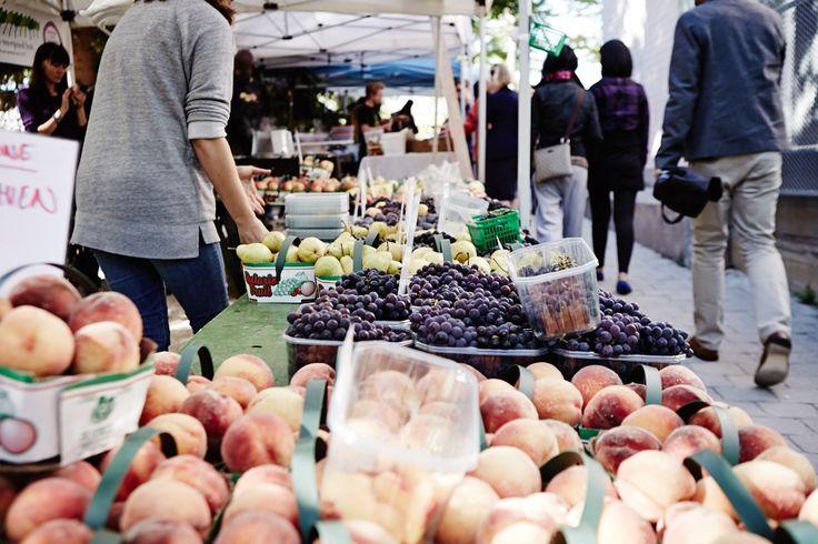 Sorauren Market Mondays  #roncy #roncesvalles #Toronto #condo #383Sorauren #torontocondos #urban #architecture #condosforsale #marketmondays #fresh #local #produce