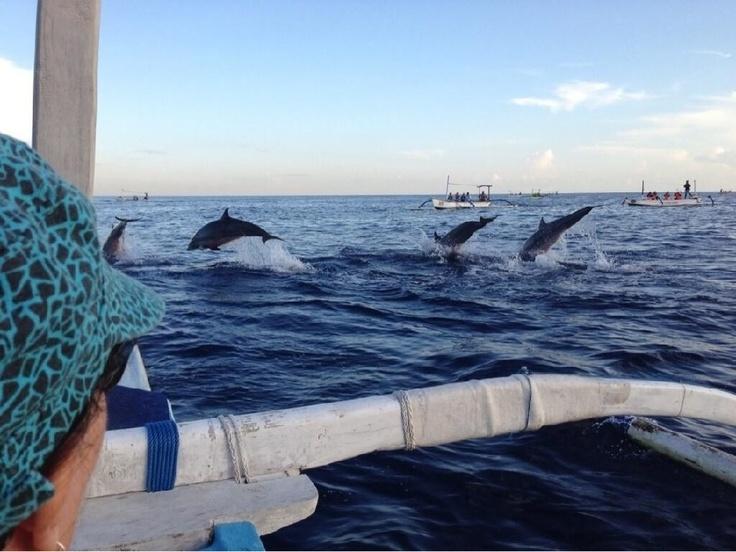 Bali, Lovina Beach, Tropical Island, Dolphins