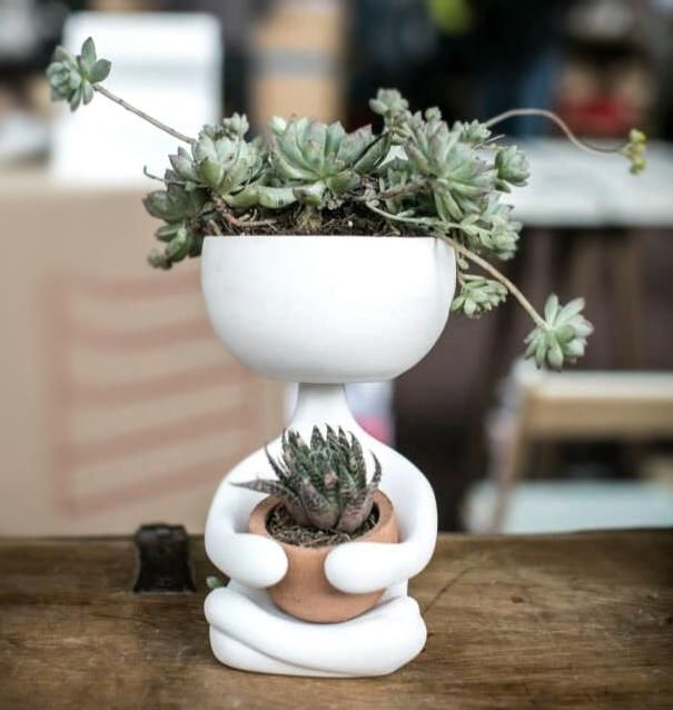 25 best ideas about ceramica on pinterest pottery ideas - Plantas de interior resistentes ...