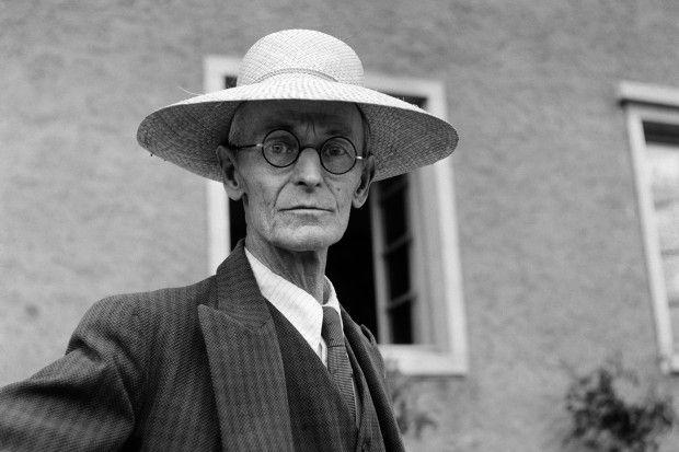 """Hermann Hesse: """"Wenn ein Tier oder ein Mensch seine ganze Aufmerksamkeit und…"""