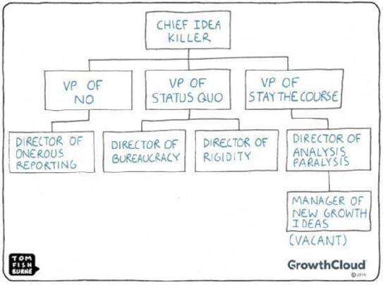 Best 20+ Business Organizational Structure Ideas On Pinterest