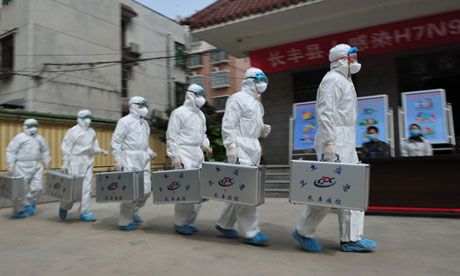 Chinese colonel says latest H7N9 bird flu virus is U.S. biological weapon | The Extinction Protocol: 2012 and beyond