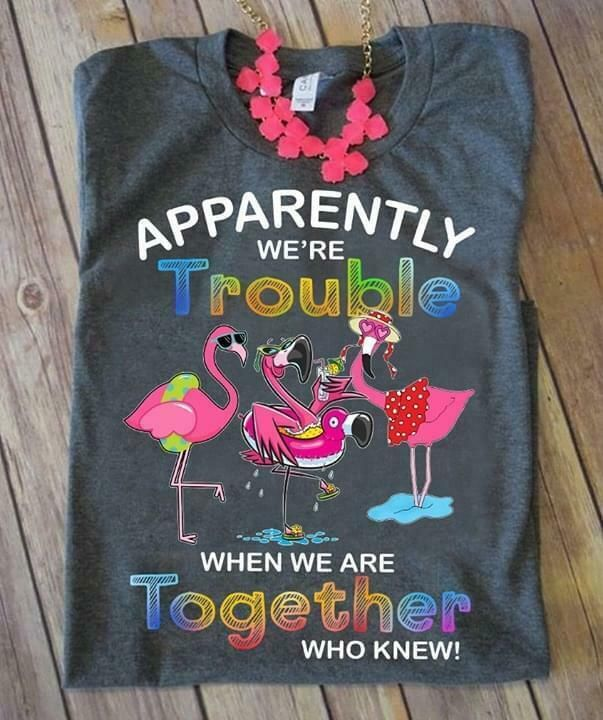Cute Apparently Were Trouble When We are Together Flamingo T-Shirt