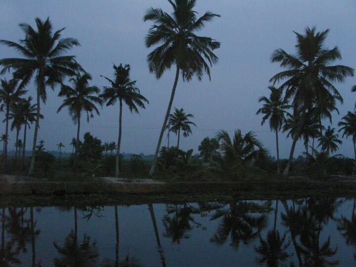 Evening in the Backwaters - Kerala