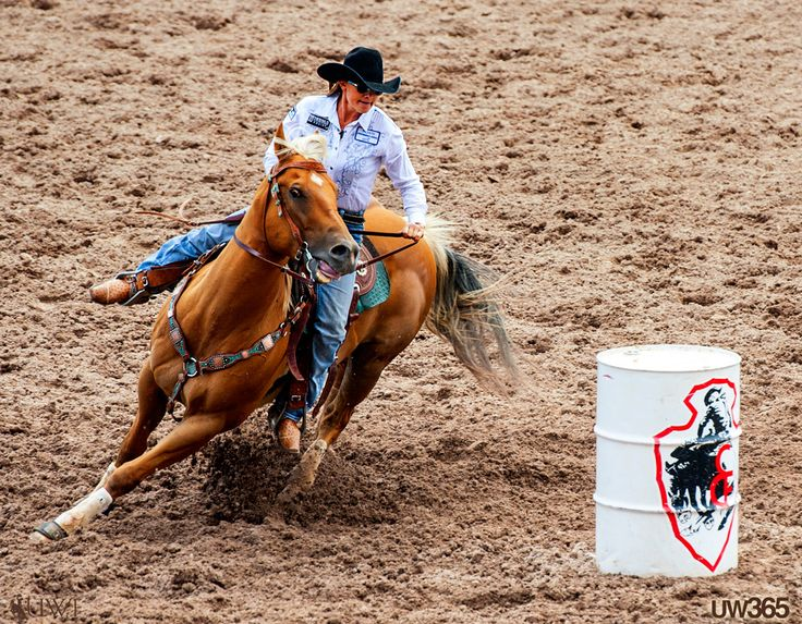 Spread betting and cfd rodeo