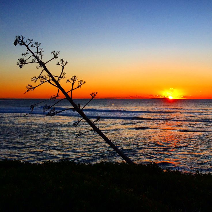 Amazing Sunset... ❤️  S'Archittu, Cuglieri, Sardegna