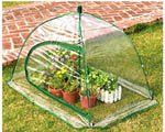 Special Offers - GreenThumb Pop-Up Greenhouse For Sale - In stock & Free Shipping. You can save more money! Check It (February 01 2017 at 11:43AM) >> https://growinglightfixtures.com/greenthumb-pop-up-greenhouse-for-sale/