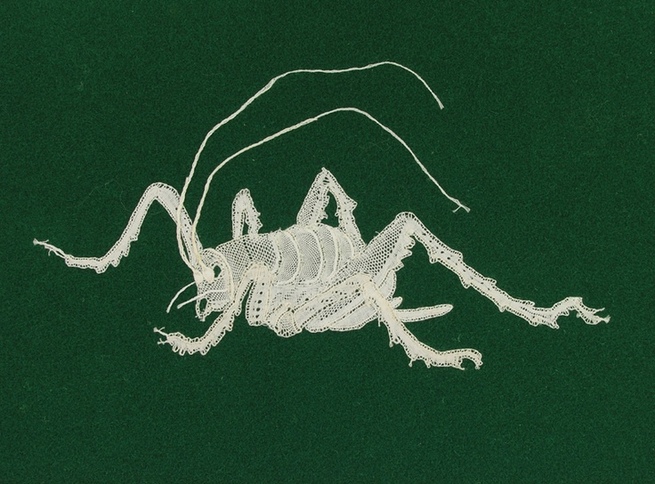 Honiton Lace Weta made by Alwynne Crowsen, Henderson Valley resident and co-founder of Auckland Embroiderers' and Lacemakers' Guild in 1970.