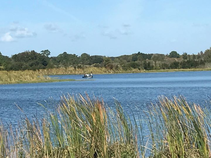 While the election polls are buzzing we have our fishing poles out on our private lake. #LetsGetDirty #LoveFL #TripAdvisor #Fishing via Orlando Activities For Adults