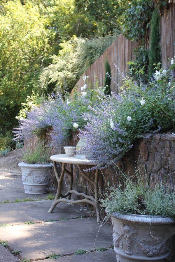 Voor de overgang van hoog terras aan kant van buurman: naar lagere tuin, een stenen rand met bovenop houten schutting Lavender