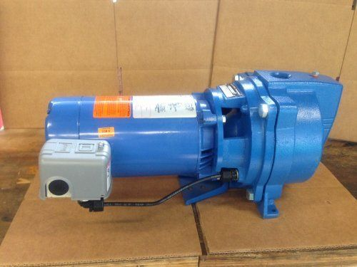 Jet Pump: Goulds Shallow Well Jet Pump