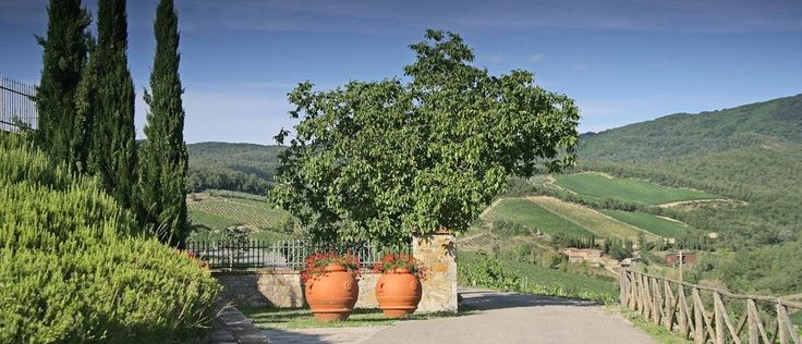 Wine farm: 100 on Parker : Montevertine: photogallery. Images and photo of our farm and our territory.