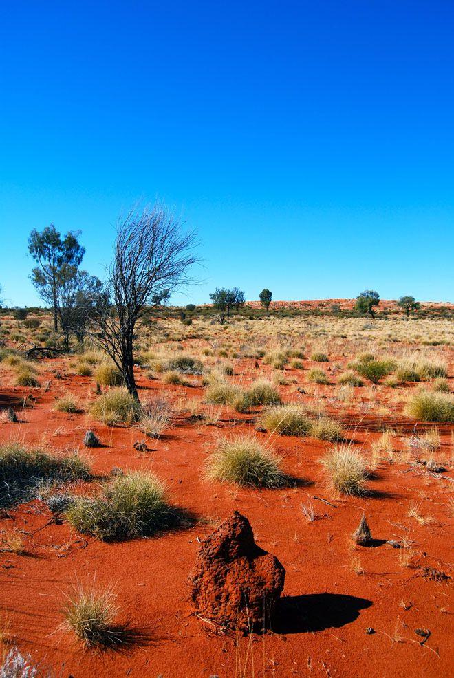 Пустыня Виктория - Заповедник на юге страны в одноименной пустыне, граничит со штатами Западная и Южная Австралия. Учрежден в 1965 году, площадь 2.5 млн га. Охраняет природные комплексы песчаных пустынь, каменистых гряд и соленых озер в южной части самой большой австралийской пустыни.