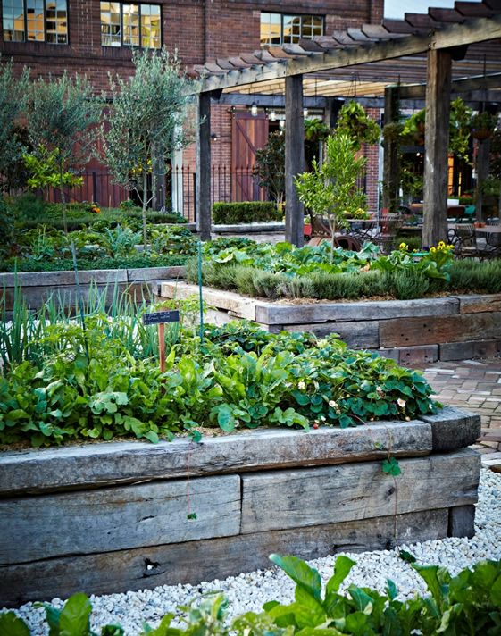 Edible Landscaping: Raised Beds vegetable garden   jardin potager   bauerngarten   köksträdgård