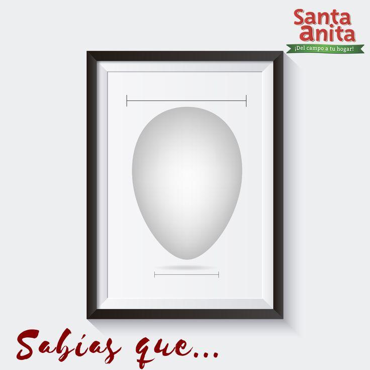 Sabías que…¿Los huevos  se conservan mejor si se coloca la punta más fina hacia abajo?. #TipsSantaAnita