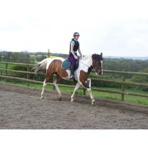 1 hour private lesson  This voucher is for a 1 hour one to one lesson at Brimington Equestrian Centre a British Horse Society approved riding school, located in Brimington just out side of Chesterfield. The centre offer lessons every day except Thursday. The centre has a 20m x 60m outdoor arena for lesson with a wide range of horses and ponies. The centre staff our friendly well trained and qualified.