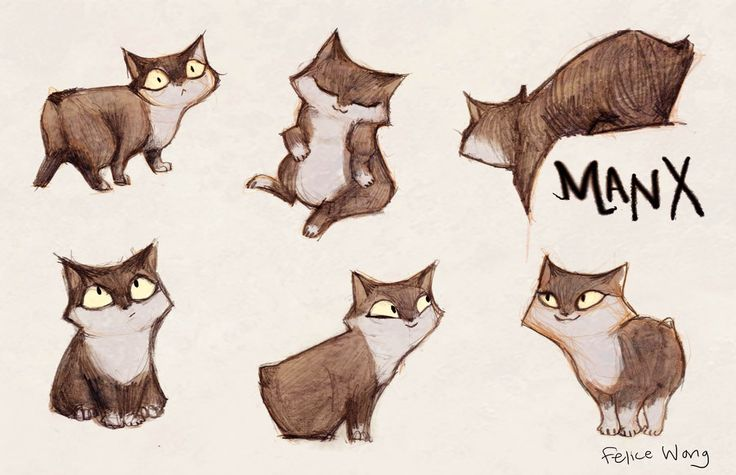 Manx cat by ~the-charming-potato on deviantART
