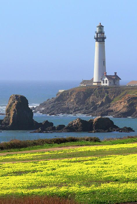 Pigeon Point Lighthouse Ca Great Place To Hike Beautiful