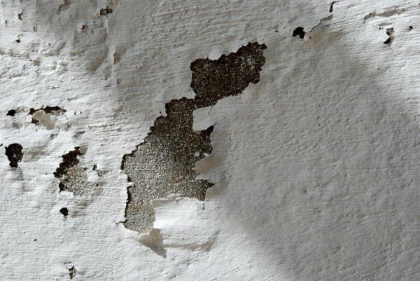 Como Acabar Con La Humedad En Las Paredes Como Pintar Una Pared Con Humedad Paso 1 Como Pintar Una Pared