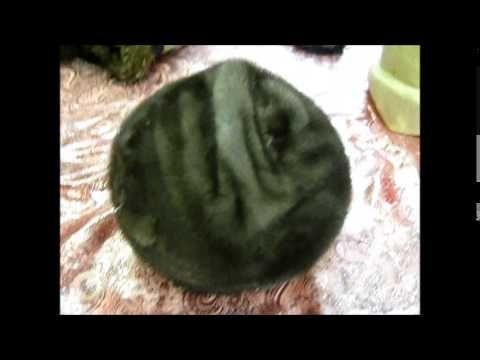 Перетяжка меховой шапки на берет - YouTube