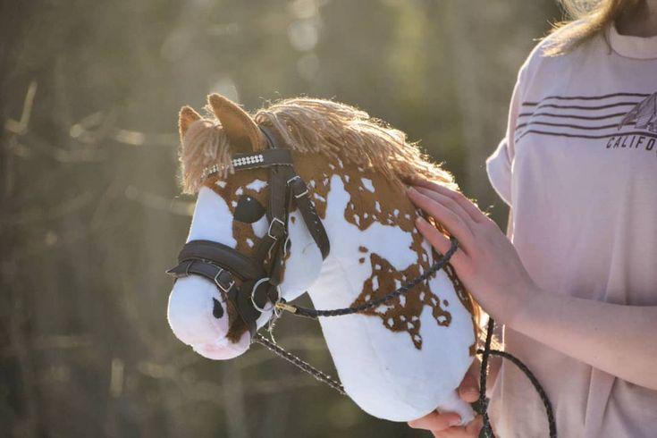 Normalerweise haben meine Pferde keinen speziellen Charakter, aber Elvis nicht …