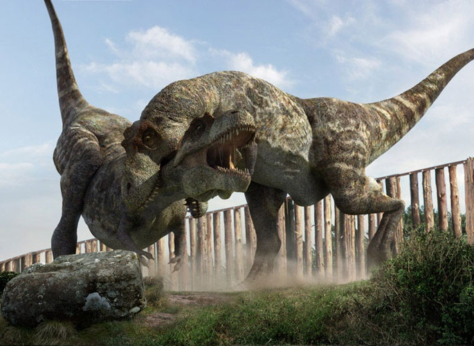 Pictures Of Real Dinosaurs Fighting : galleryhip.com - The Hippest ...
