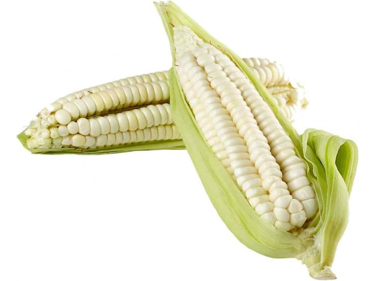 2,95 €Worlds Largest Giant Corn Seeds Cuzco Price for Package of 3 seeds. Giant Cuzco Corn is the Largest Corn in the World! The white corn of Cuzco, one of perhaps eight varieties of corn cultivated in the sacred Valley, is called paraqay sara in Quechua and is the most broadly commercialized of the valley's inventory of corn. Not only is the corn consumed in Cuzco and other parts of Peru
