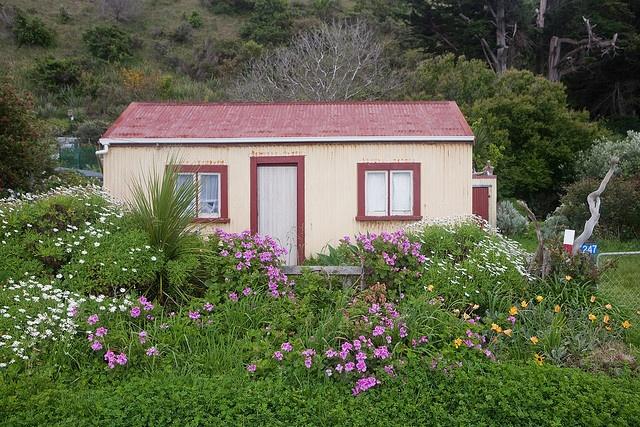 kiwi bach, East Cape