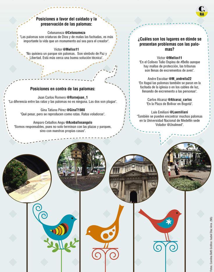 La twittercrónica recorrió la plazuela San Ignacio y el parque de Belén para mostrar la sobrepoblación de palomas. La falta de educación sobre el tema es una de las causantes.