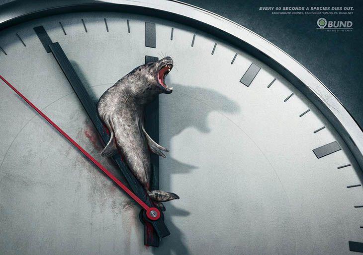 A cada 60 segundos uma espécie morre. Cada minuto conta.