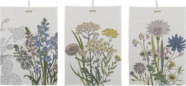 Set van 3 botanisch geïnspireerde keukenhanddoeken van Bloomingville
