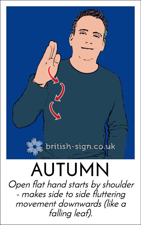 A bonus #BritishSignLanguage  sign just for today!  #AutumnIsHere