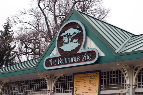 237 Best Zoo 39 S Around Usa Images On Pinterest