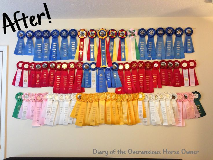 Diary of the Overanxious Horse Owner: Easy DIY Ribbon Display
