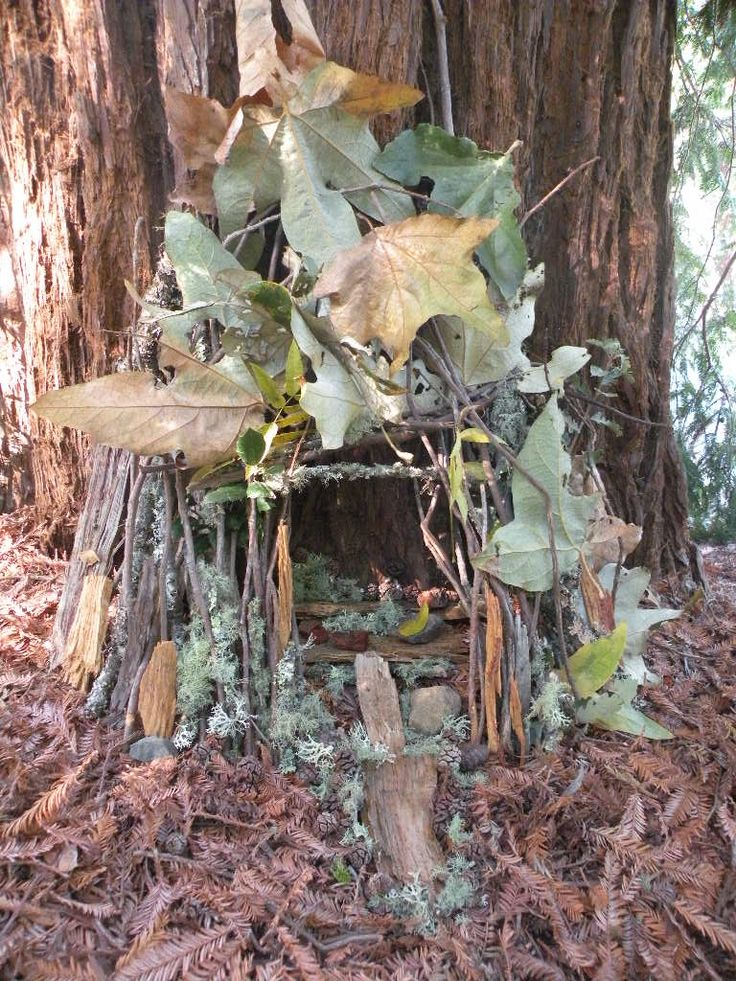 Fairy houses a perfect craft for a day in the woods.