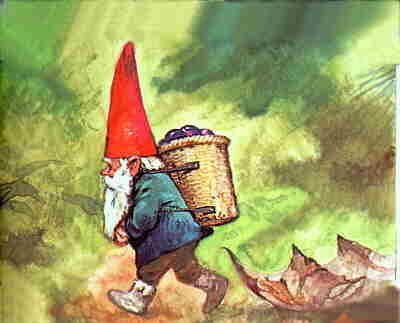 Woodland Gnome- The woodland, or forest, gnome is probably the most common. But this is difficult to verify, as he is not fond of showing himself to man and has many escape routes. His physical appearance resembles that of the ordinary gnome.