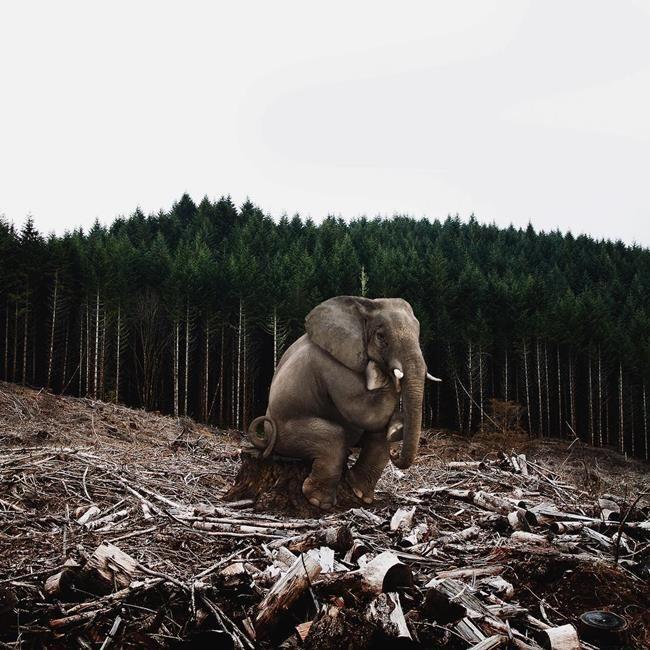 Sanat Eserlerine İlham Verici Düşünceleri ile Sarılan Sanatçıdan 30+ Fotoğraf Sanatlı Bi Blog 41