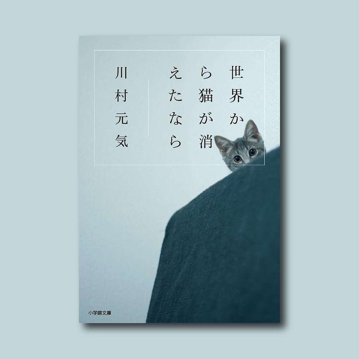 如果這世界貓消失了