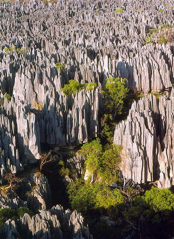 Woud der Messen - Madagascarbr /Madagascar is ... De rotsformaties 'Meteora', die voornamelijk uit zandsteen bestaan, steken 620 meter boven het landschap uit. De feëerieke omgeving leek volgens paters de perfecte omgeving om een klooster te bouwen. Die kloosters blijven tot op de dag van vandaag in gebruik. Tot 1925 was het enkel mogelijk om het klooster Ayia Triada via ladder of mand te bereiken.